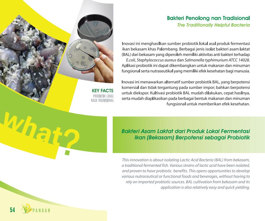 Bakteri Penolong Nan Tradisional